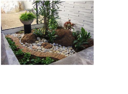 Vorrei realizzare un giardino interno con piante grasse tra le pietre - Pietre per interno casa ...