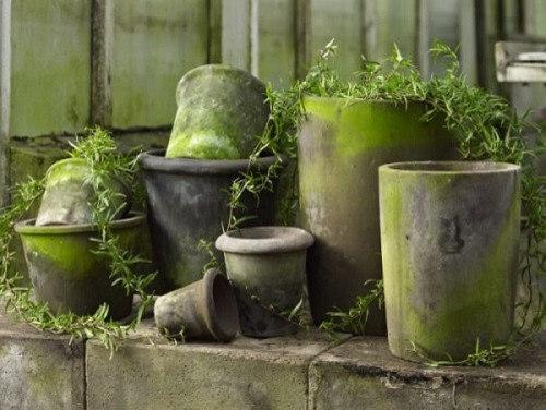 Et udpluk af mine produkter - Udendørs krukker & planteskjulere