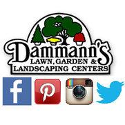 Dammann's Lawn, Garden, & Landscaping Centers's photo