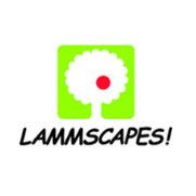 LAMMSCAPES!'s photo
