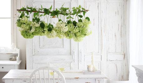 Romantische Blumendeko: Wenn der Himmel voller Hortensien hängt