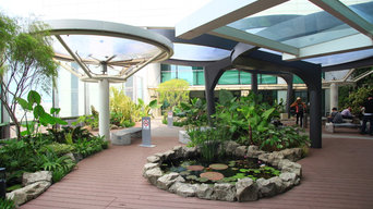 Changi Airport Lily Pad Garden
