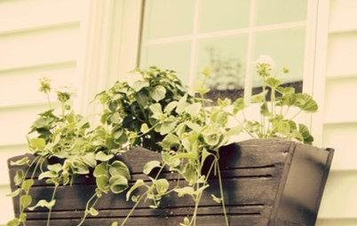 Handmade Home: Build a Simple Flower Box