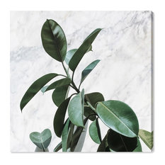 """""""Plant Life and Marble"""" Canvas Print, 110x110 cm"""