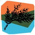 Creative Environmental Design's profile photo