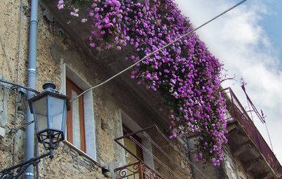 I Vasi Giusti per Balconi Piccoli e Davanzali Strettissimi