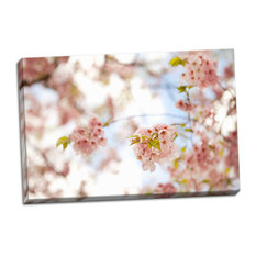 Fine Art Photograph, In Bloom XVI, Hand-Stretched Canvas