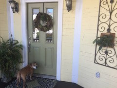 Houzz Call Show Us Your Paint Makeovers