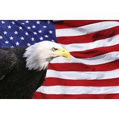 All American Exteriors of Michiana, LLC. - Niles, MI, US