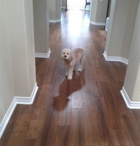 Cleaning Engineered Hardwood Floors hardwood_floor_cleaning Engineered Hardwood Flooring
