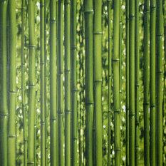 Обои виниловые 0.53х10 м, бамбук, цвет зелёный, АС 95936-1