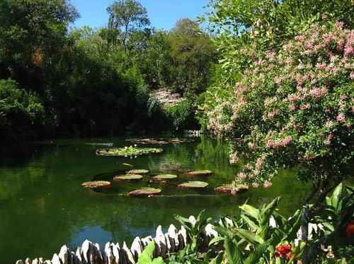 Japanese tea gardens in brackenridge park san antonio - Japanese tea garden san antonio restaurant ...