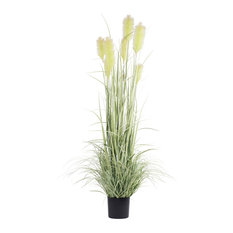 """6'x18"""" Green Reed Grass With Black Pot"""