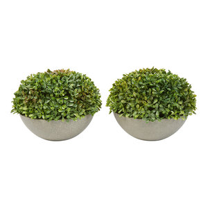 Pure Garden 2-Piece Realistic Boxwood Topiary in Stone Bowls