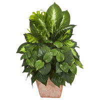 Nearly Natural Mix Greens Dish Garden Artificial Plant in Terracotta Planter