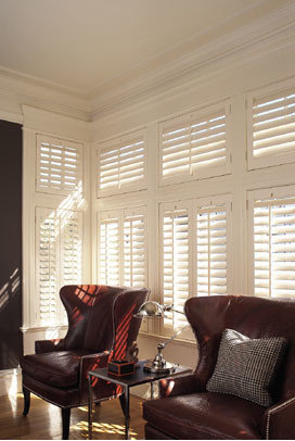 Custom Color w/ Painted Hinges - Window Treatments