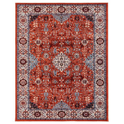 Traditional Area Rugs by Amer Rugs Inc.