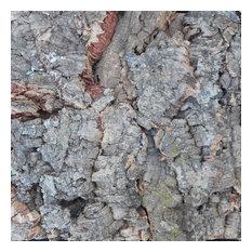 "Cork Wall Tile Single Sample, 8""x12"", Tree Bark"