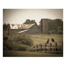 """Buzzard Barn"" Landscape Photo Rural Unframed Wall Art Print, 11""x14"""