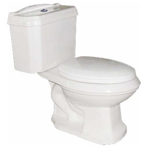 Dual Flush Elongated Two Piece Toilet White And Green