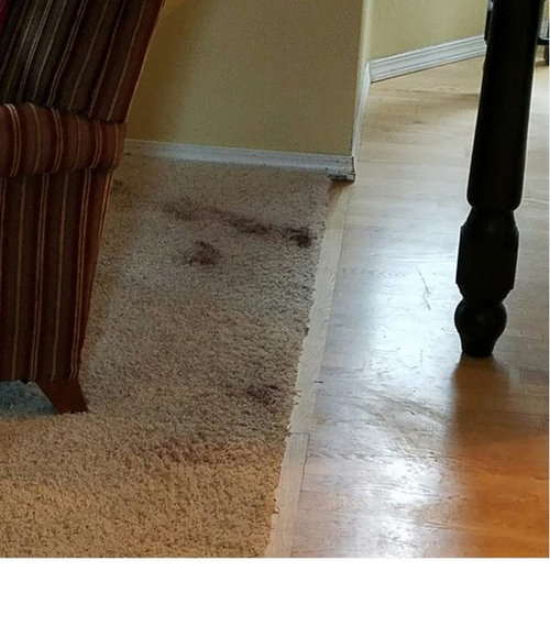 How To Handle Damage Done To Carpet By Granite Installer