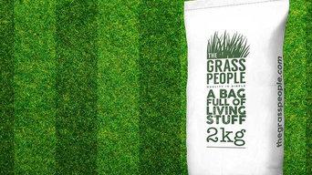 SUPERSTAR: Back Lawn