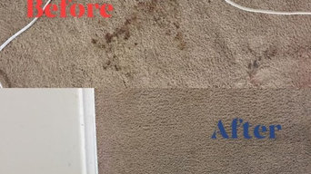 Before & After Carpet Stain Removal in Norwich, CT