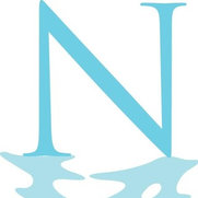 Natural Reflections Pools & Spas's photo