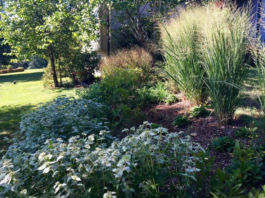 Glendale: 20 years of Soul Conservation, Somerset, VA