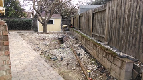 Plan To Install Rod Iron Fence Gate Separate Front Yard From Side Would Like Elish A Entertaining Area In With Succulent Garden