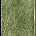 "Living Walls Tile - Native Grass Tile Backsplash, Grass Green - Bring the beauty of a field of natural grasses to your kitchen backsplash with this large format tile from Living Walls Tile. Each tile measures 9 inches wide by 14"" tall and seams together with neighboring tiles to create a continuous image of a field of natural grass. Your backsplash can be completed with our matching border and field tile in 2 or 3 inch widths, creating an 18 or 20 inch tall tile backsplash.  These tiles can be glazed with four different glaze colors to match your kitchen color scheme; Stone Gray, Wicker, Taupe or Grass Green."