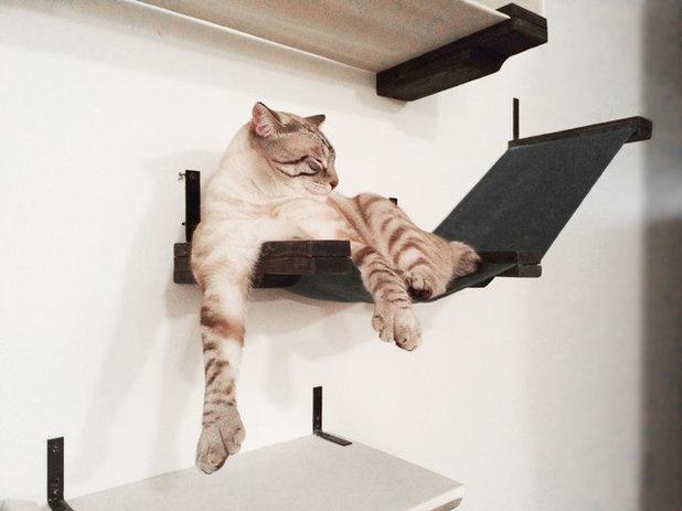 12 arbres chat fabriquer soi m me. Black Bedroom Furniture Sets. Home Design Ideas