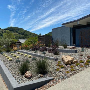 San Rafael Eichler - Mid-Century Modern  Back & Front Landscape Remodel