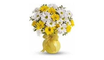 E Florist Waterbury