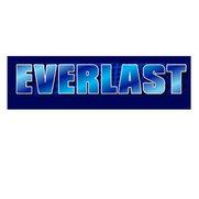 Everlast's photo