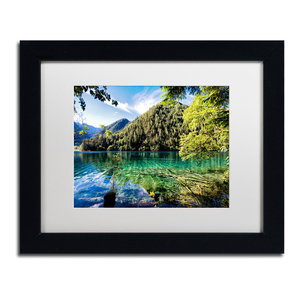Philippe Hugonnard Tiger Lake Ornate Framed Art Contemporary Photographs By Trademark Global