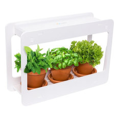 LED Herb Garden - At Home Mini Window Planter Kit for Herbs, Succulents Indoor