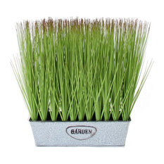 "14"" Wheat Grass With Brown Tips in Rectangular Window Box, Set of 2"