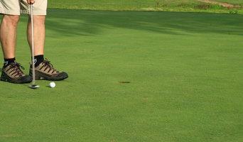 Golf Greens