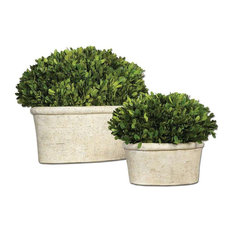 Preserved Boxwood Artificial Flower or Plant in Natural Evergreen Foliage