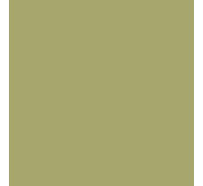 Color guide how to work with green for Dark sage green paint color