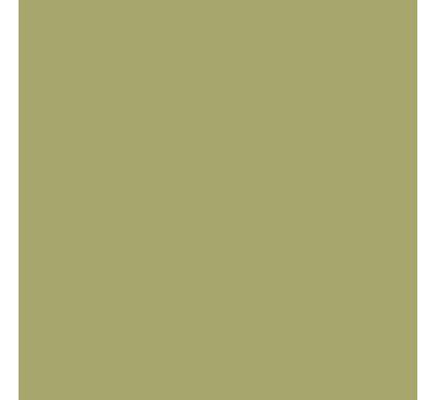 Khaki Green Paint Fair Ici 830 Match