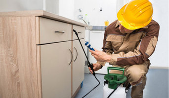 Same Day Pest Inspection Services Melbourne