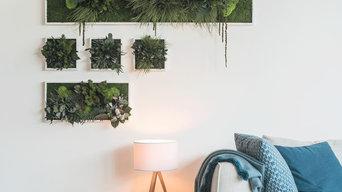 Moos- und Pflanzenwände