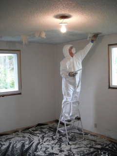 have you ever dealt with popcorn ceilings?