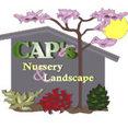 CAPS Nursery and Landscape's profile photo