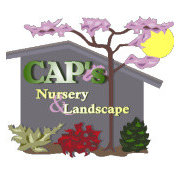 CAPS Nursery and Landscape's photo