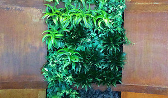 Plant wall in entry way