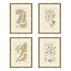 "4-Piece Sea Plants Artwork Set,1 13""x18"""