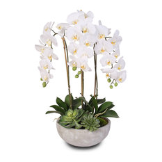Silk White Phalaenopsis Orchids And Succulents With Modern Stone Bowl